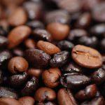 coffee-bean-plantations-rwanda