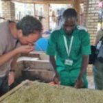 coffee-tour-rwanda-11-DAY-RWANDA-COFFEE-IMMERSION-SAFARI-TOUR