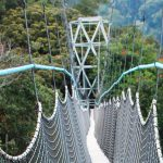 high-adventure-canopy-walk