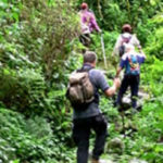 Trekking in National Park